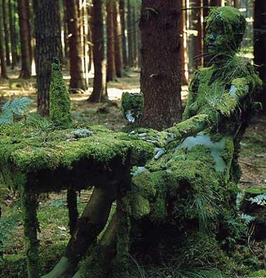 Forest-piece at Schnaitsee, by Veruschka