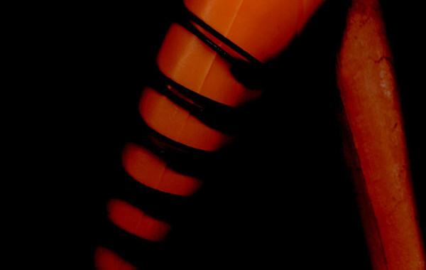 Orangebody 2