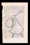 La Ligue Psychique pour les Filles: Les Bibliots - 4 of 5