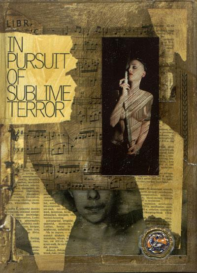 In Pursuit of Sublime Terror
