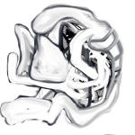 Untitled (iPad Drawing 2)